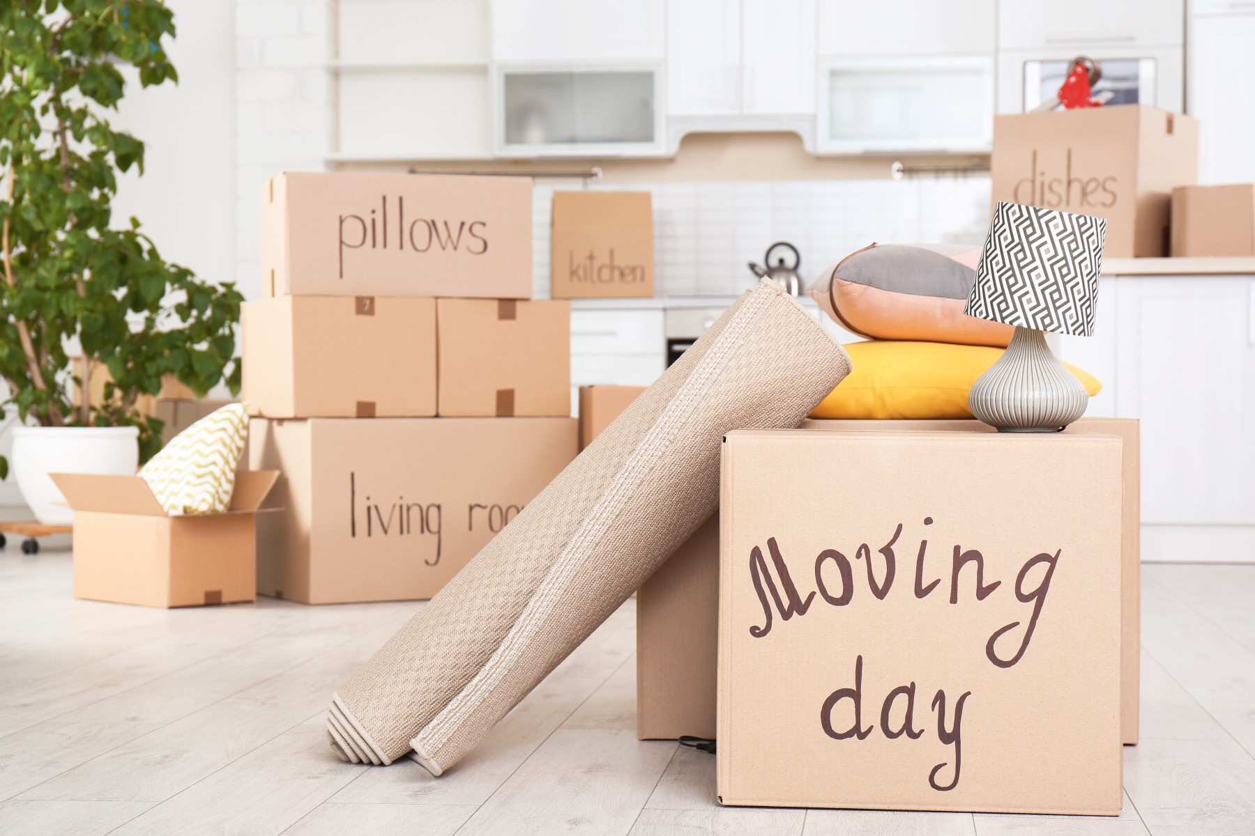 Packing Services in Edmonton
